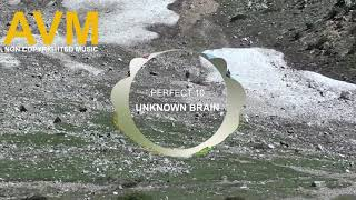 Download Unknown Brain - Perfect 10 (feat. Heather Sommer) Mp3 Juice Electronic Music Free Music [AVM Music]