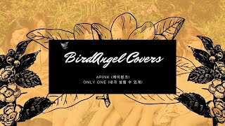 BirdAngel Covers - Only One (내가 설렐 수 있게) by Apink (에이핑크)