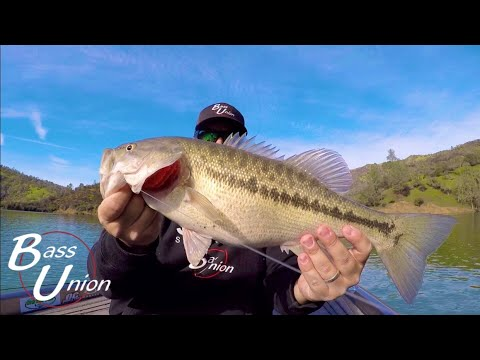 Spring Bass Fishing Lake Berryessa With Football Jigs And A-Rigs