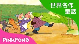 【日本語字幕付き】 The Great Big Turnip | 大きなかぶ 英語版 | 世界名作童話 | ピンクフォン英語童話