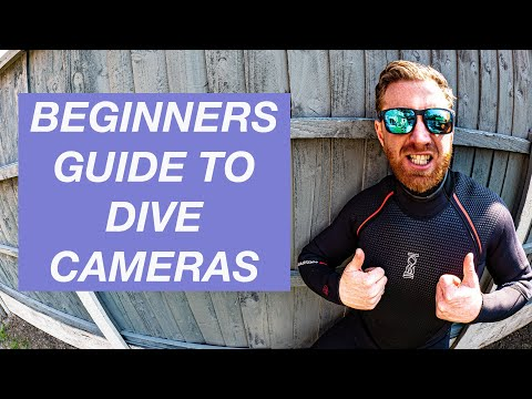BEST CAMERA FOR SCUBA DIVING   Video And Underwater Photography   GOPRO Vs COMPACT / SYSTEM   EP11