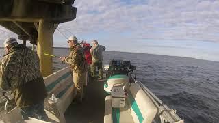 Crappie Fishing with PANOPTIX #Panoptix, #fishfinder, #crappie
