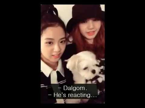 [ENG SUB] BLACKPINK LISA And JISOO Live