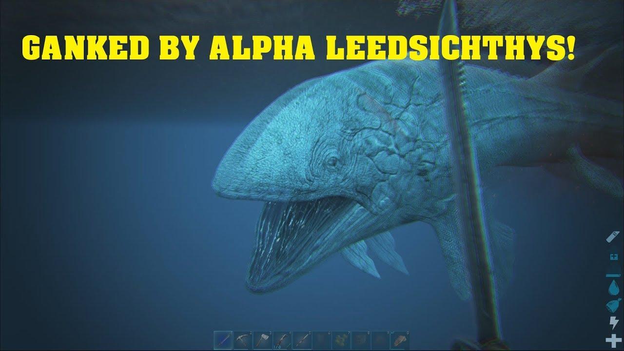 Alpha Leedsichthys Destroys Everything I Own Youtube