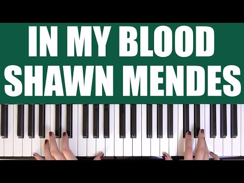 HOW TO PLAY: IN MY BLOOD - SHAWN MENDES