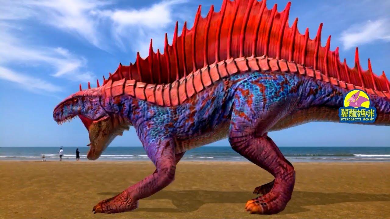 遇見恐龍【異齒龍】淡水.沙崙海灘 - YouTube