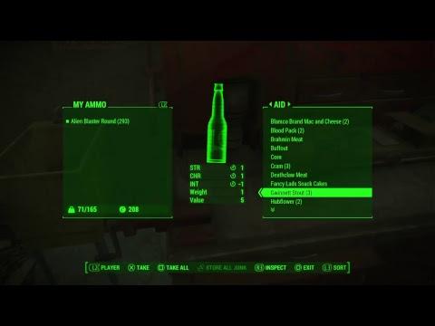 Fallout 4 Snow Survival