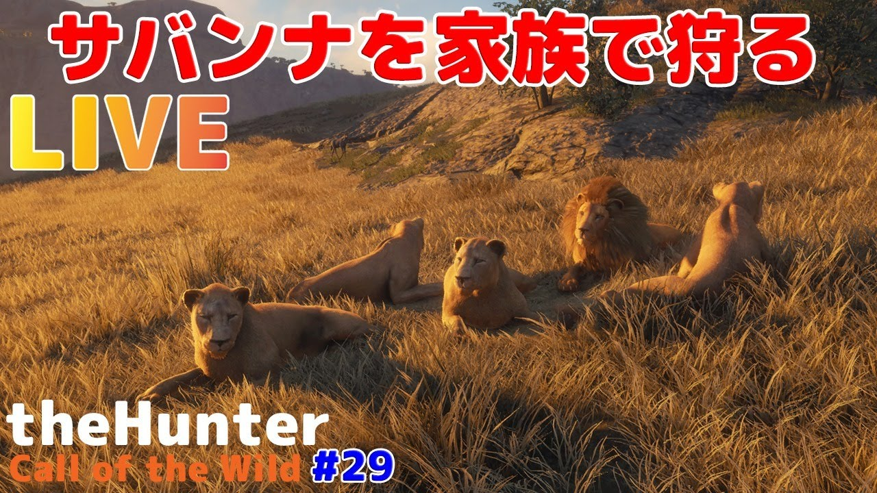 【theHunter: Call of the Wild PC版】サバンナを家族で狩る!#29