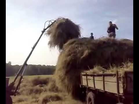 видео: самодельный кун ,,, как я готовлю сена