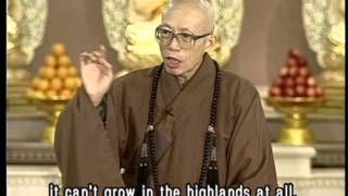Why does Buddhism use the lotus flower as a symbol? (GDD-376, Master Sheng-Yen)