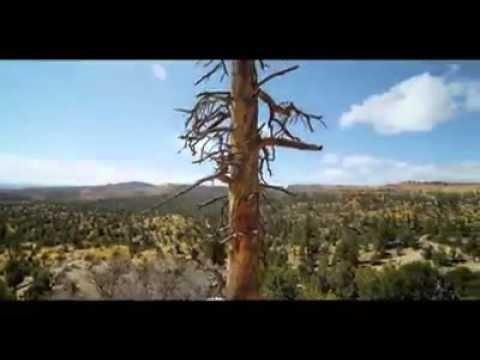 kısa bilim kurgu belgeseli