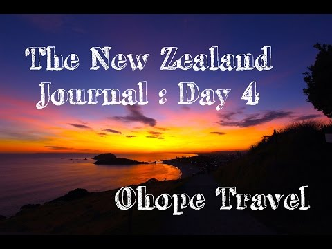 New Zealand Journal: Day 4 - Ohope Travel