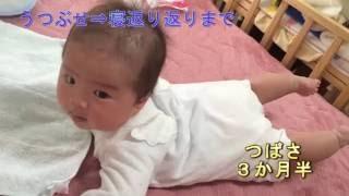 【つばさ】うつぶせからの寝返り返り!【ごろん3連発】 thumbnail
