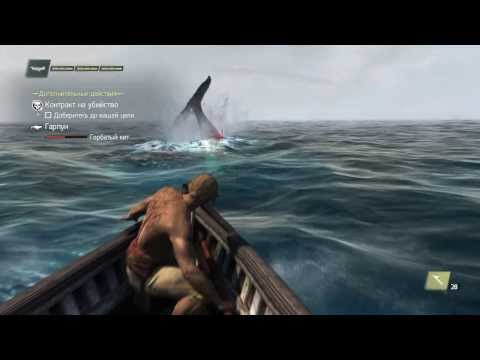 ассасин крид 4 белый кит где найти видео