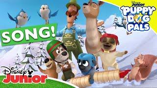 🎸 Songs from Season 2 | Puppy Dog Pals | Disney Junior UK