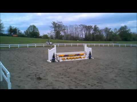 Arc Royal Tumble-Lena