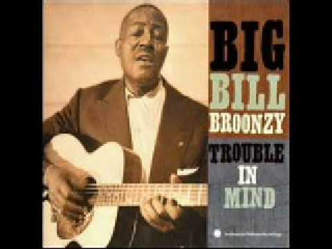 Big Bill Broonzy: Black, Brown And White
