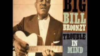 Big Bill Broonzy: Black, Brown and White