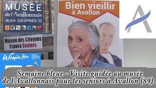 Visites guidées au musée de l'Avallonnais pour les seniors à Avallon (89).