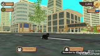 Играю в симулятор кота онлайн