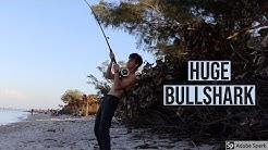 7 Foot Bullshark Defeats Fisherman On Anna Maria Island! ( I Messed Up )