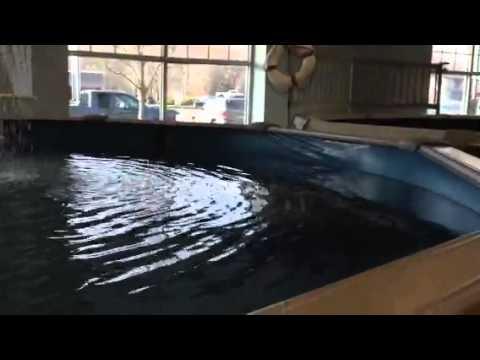 Namco pools youtube for Namco pools