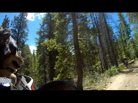 KTM690/500/450 & DRZ400 with Deacon on Boulder County West Magnolia Trail - Part 2of2