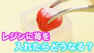 【レジンDIY】イチゴのまるごとキーホルダー♡ つまようじ60本 検索動画 30