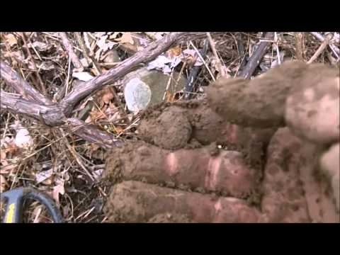 RELIC HUNTING A REVOLUTIONARY WAR CONTINENTAL ARMY ENCAMPMENT - episode 1