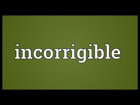 Incorrigible Meaning