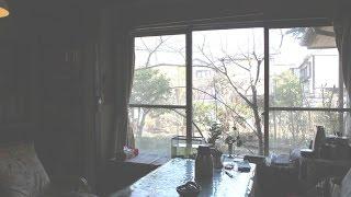 旧くからの友人のお宅を訪ねました 40年以上の交流のお庭・・とても、...