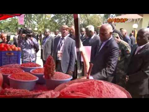 Chefe de Estado mantêm contacto com os produtos agrícolas do Moxico