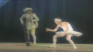 Маски-шоу. Маски в опере-2. Лебедь. Юмористический сериал.