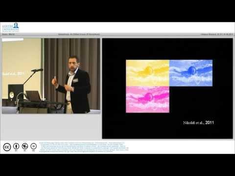 Danko Nikolic speaks on ideasthesia
