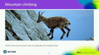 Auditors in the Cloud: Audit Risk and SaaS Applications