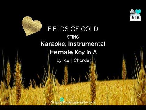 Fields of Gold Sting Karaoke Instrumental in Female Key
