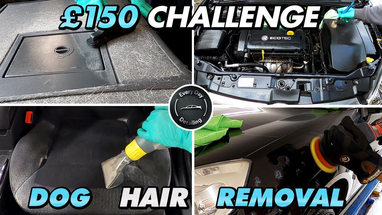 Filthy/Dirty Car Detail Ep#21 Detailing a Dirty/Disgusting Vauxhall Vectra Dog Hair Challenge