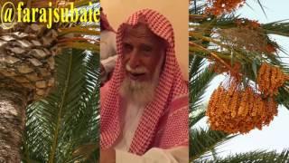 قصة ناصر العبدالله الهلالي وكيف دله القعس الى مصدر رزقه قصة وعبره