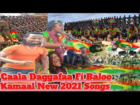 Download New Oromo Music 2021 Caala Daggafaa Fi Baloo Kamaal  Goota Diree Maroo New 2021 Songs