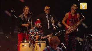 Los Auténticos Decadentes - Diosa - Festival de Viña del Mar 2017 - HD 1080p