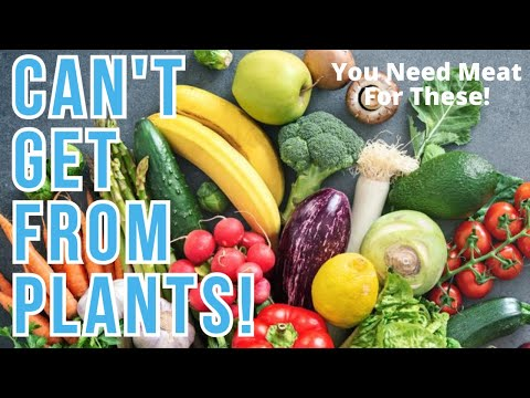 Nutrients Only Found in MEAT! | 5 Essential Nutrients You CANNOT GET on a Vegan Diet