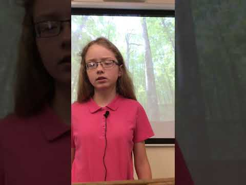 Is deforestation a problem? | Allura Mills | Chester County Middle School