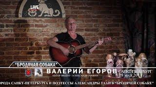 """Санкт-Петербург - День города. """"Бродячая собака"""". Выступает Валерий Егоров."""