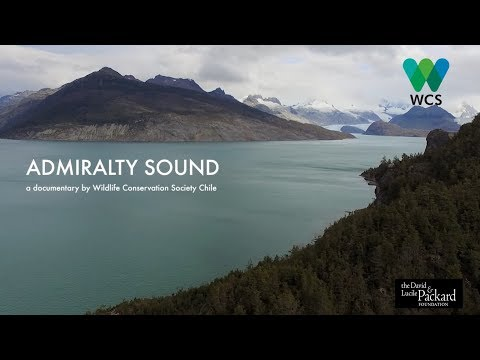 Admiralty Sound, a documentary by Wildlife Conservation Soci