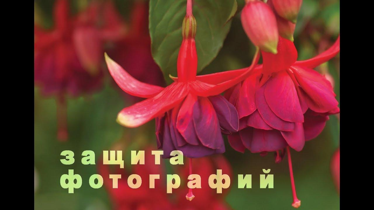 Как можно красиво подписать фото в инстаграме