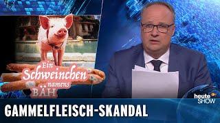 Ekelwurst an der Theke: der nächste Gammelfleischskandal