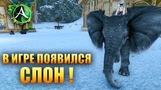 ArcheAge - СЛОН!
