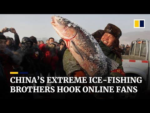 Videos of Chinese brothers ice-fishing in extreme cold draw one million viewers online