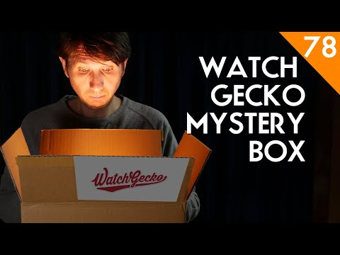 Watch Gecko Mystery Box Watch Straps Review