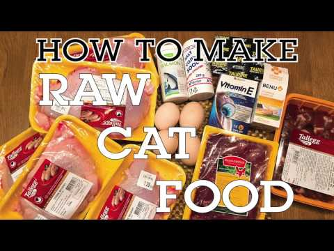 How to make raw cat food - quick and easy tutorial